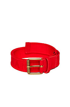 Logo Web Belt
